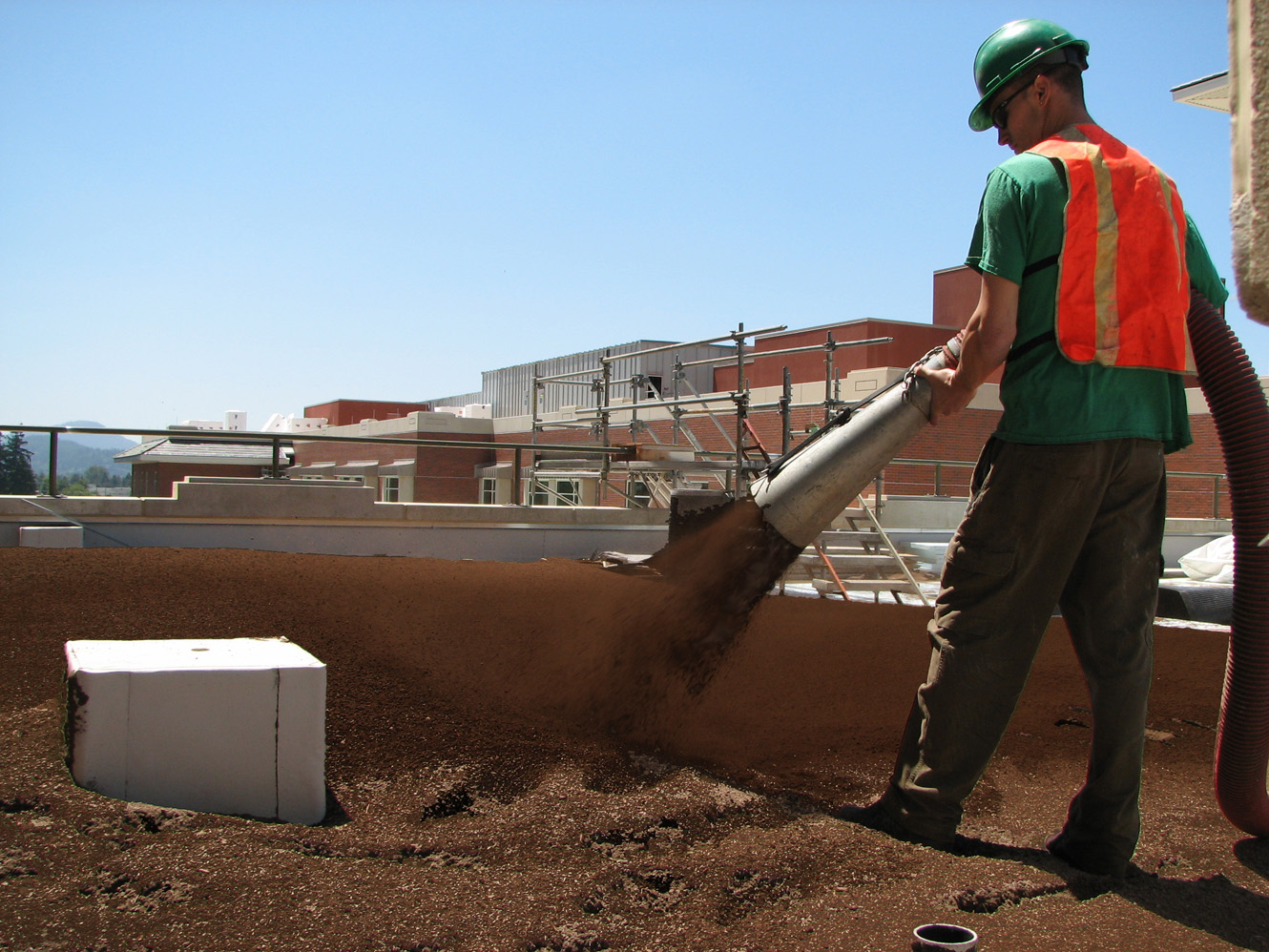 EB Green Roof Pic